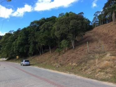 Terreno Centro